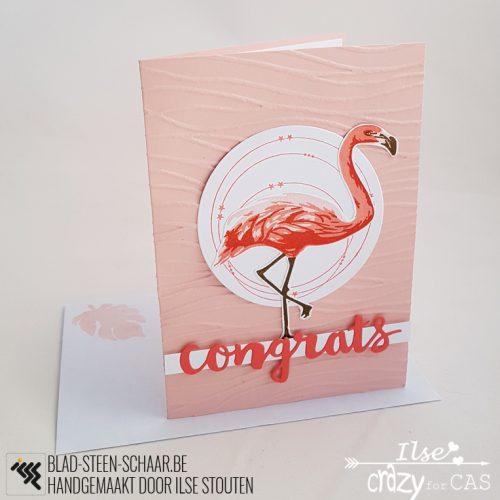 Stouten | HA Layering Flamingo | blad-steen-schaar.be